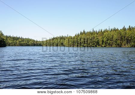Summer Landscape With Forest Lake