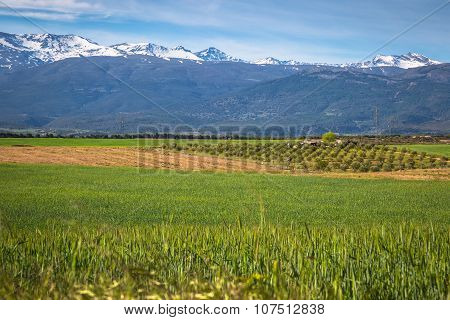 Sierra Nevada Mountain Range Spain