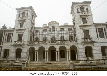 Swannanoa Palace In Fog