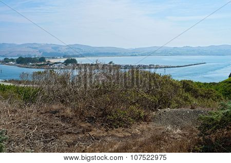 Bodega Bay Overlook