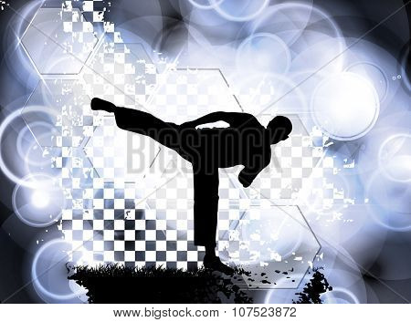 Sport, Karate