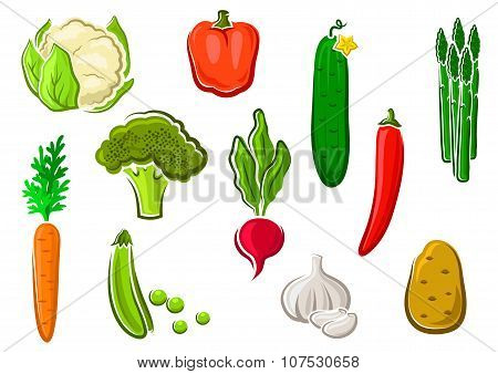 Healthy ripe colorful vegetables icons