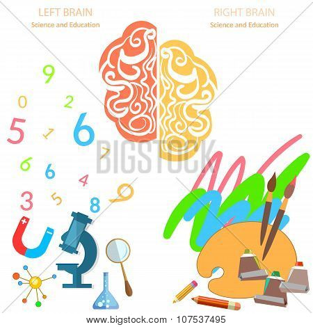Left And Right Side Of The Brain Logic And Creativity Education Sciences And Arts banners