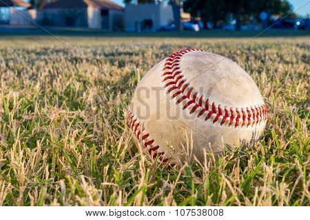 Baseball in Field