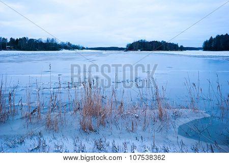 Floded Field In Winter Twilight