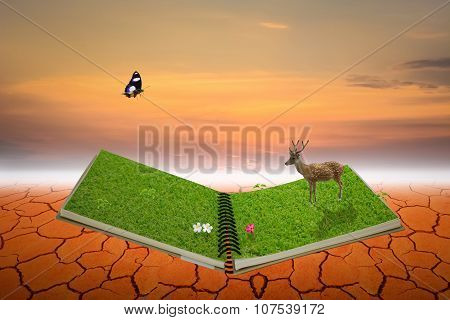 Open Notebook Nature On Dry Ground