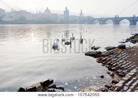 Moldau River Embankment In The Early Morning, Lesser Town, Kampa, Prague, Czech Republic