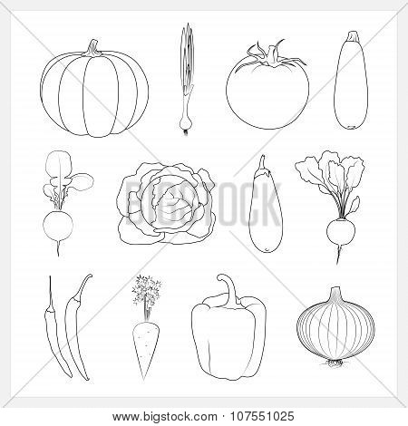 Set Linear Vegetable Icons