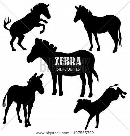 Set Of Five Zebra Silhouettes