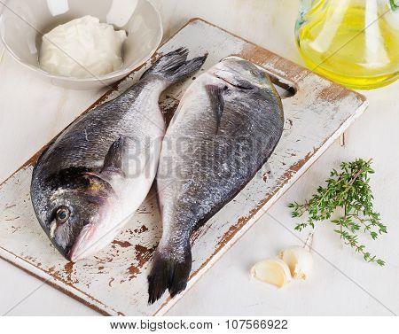 Fresh Raw Dorado Fish With Herbs