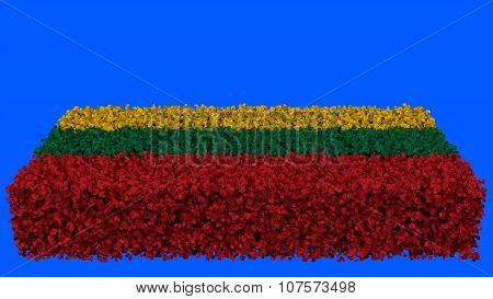 Flag of Lithuania, Lithuanian Flag made from leaves