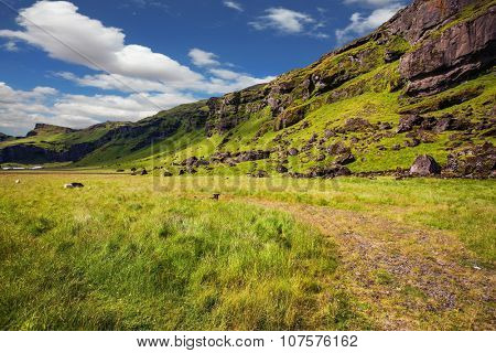 Average summer in Iceland. Green meadows along the mountain chain