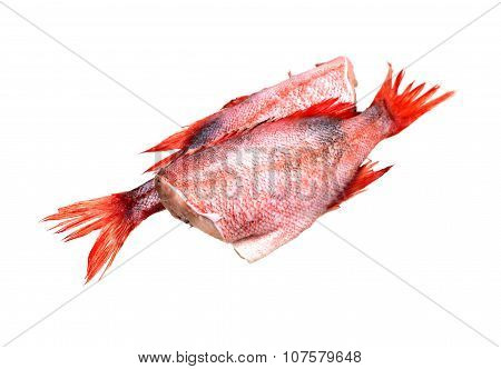 Raw Fish On White
