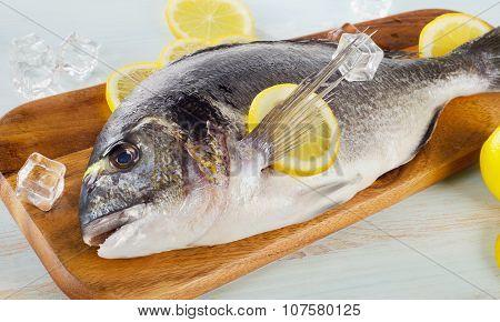 Raw Dorado With Lemon On  A Cutting Board