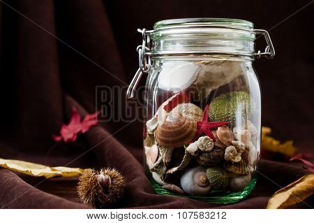 Concept Of Changing Seasons Summer In Jar In Autumn Setting