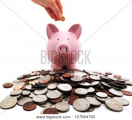 Penny Into Piggy Bank