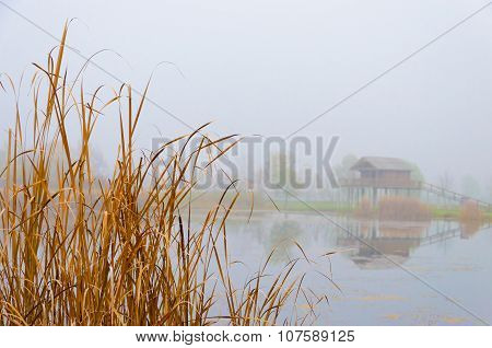 foggy autumn landscape with a lake, a stilt house and reeds