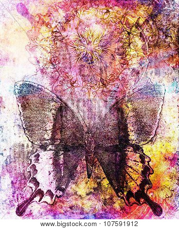 Butterfly and oriental ornamental mandala and color abstract background with spots