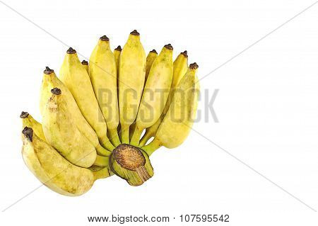 Pisang Awak Banana Isolate White Background