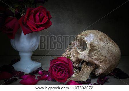 Still Life Skull And Roses.