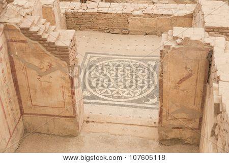Mosaic In Terrace Houses, Ephesus Ancient City