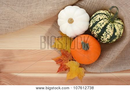 Three Autumn Gourds With Maple Leaves