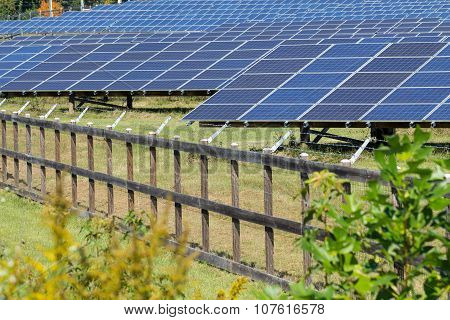 Alternative Energy Produced By Solar Panels