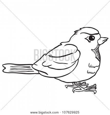 simple black and white robin cartoon
