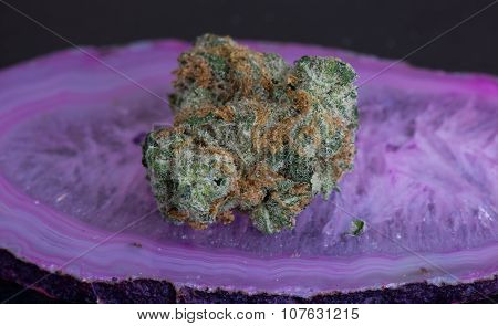 Jenny's Kush medical marijuana