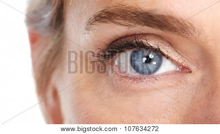 Beautiful woman eye close-up. Isolated white background.