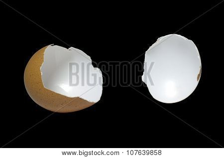 Eggshell isolated on black background