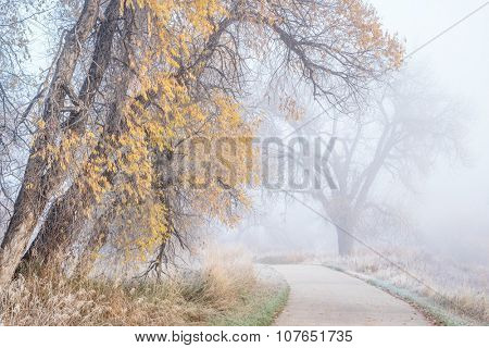 foggy November morning on a bike trail  - Poudre River Trail near WIndsor, Colorado, fall scenery with remains of gold foliage and frost