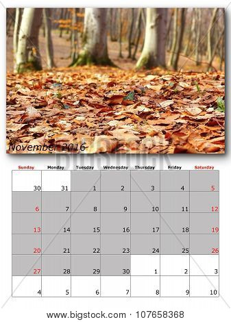 November Nature Calendar Page Layout