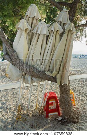 Folded Linen Beach Umbrellas In Evergreen Tamarisks Shade On Greek Sandy Autumn Beach Near Mastihari