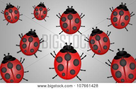 Ladybug Abstract Illustration