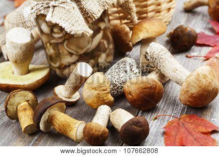 Canned Mushrooms