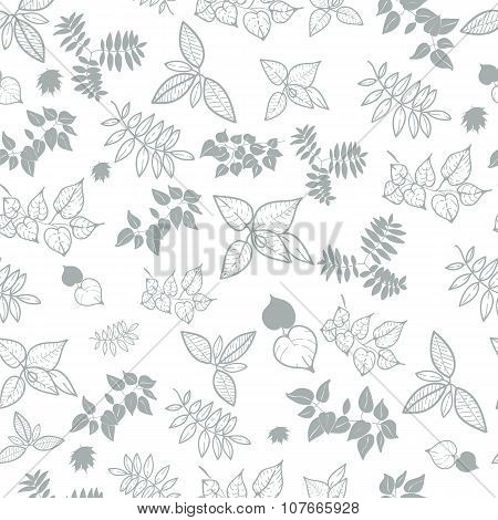 natural background from the leaves