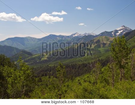 Wasatch Mountains In Spring