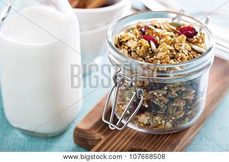 Homemade granola with quinoa and cranberry