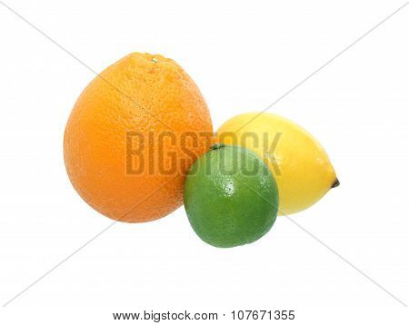 Citrus Fruits On White