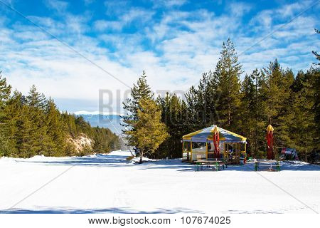 Ski slope in Bansko, Bulgaria, pine trees and small cafe