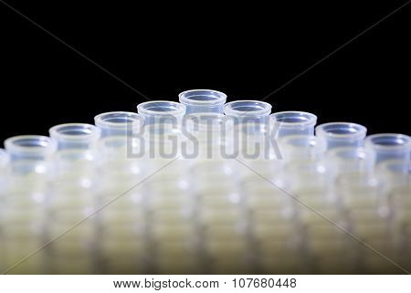 Macro Of Disposable Laboratory Tubes