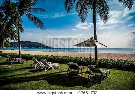Beach chairs on lawn under palm trees, behind them sand and sea