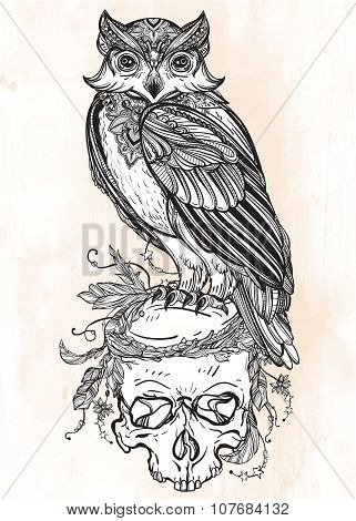 Owl with ornate scull design vintage style.