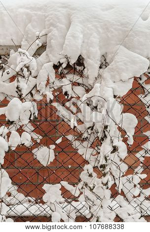 Fence From Mesh-netting After A Snowfall
