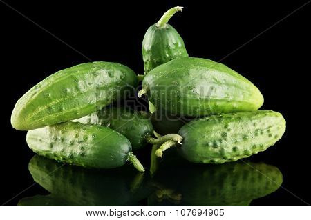Many Fresh Raw Cucumbers Isolated On Black