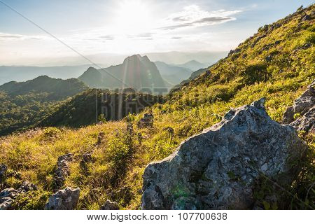Scenic Landscape With Mountains Sub Alpine In Summer