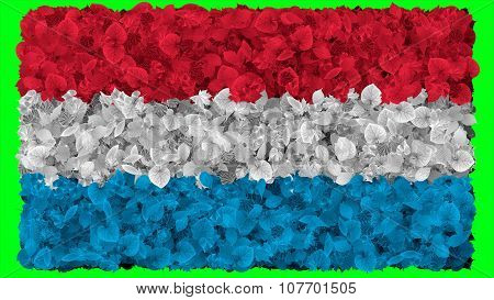 Flag of Luxembourg painted made from leaves