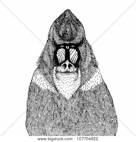 hand drawn vector illustration with an abstract mandrill isolated on a white background