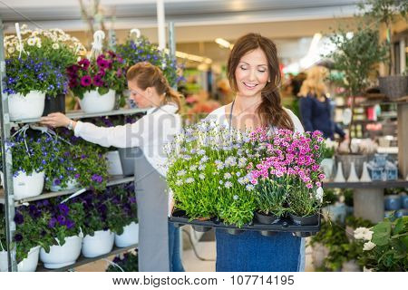 Smiling female worker carrying crate full of flower plants with colleague working in background
